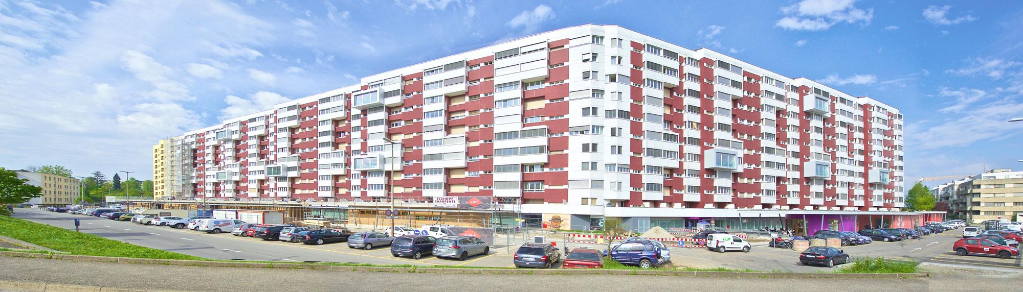 L'immeuble de logements des Libellules est construit en 1960 pour répondre à l'expansion croissante de Vernier.
