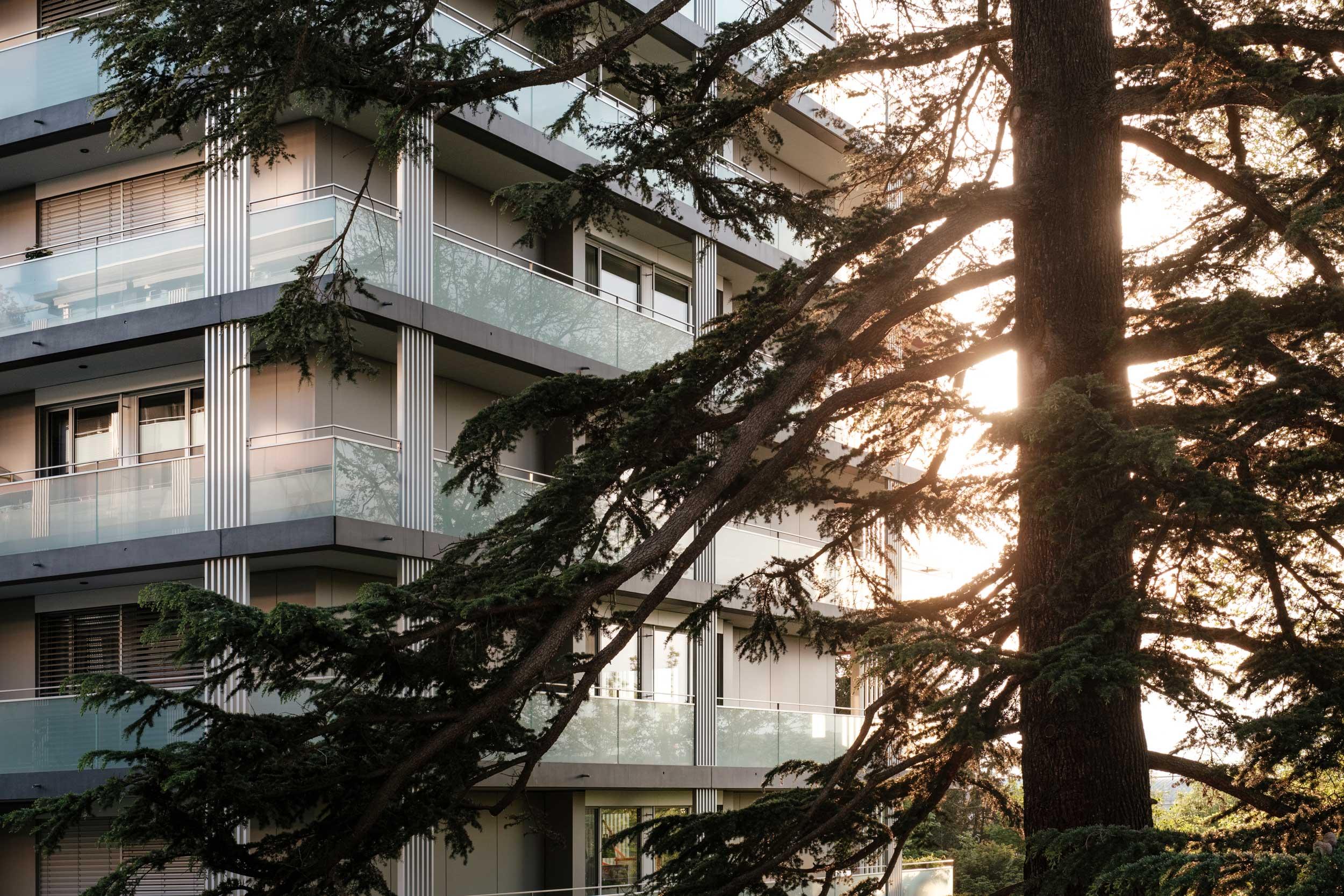 Les grands arbres qui arborent le terrain ont été préservés lors de la construction des trois immeubles.